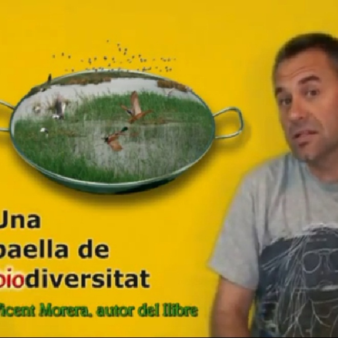 Vicent Morera:
